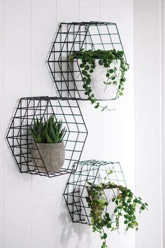 display hanging bottles vases   branch projets