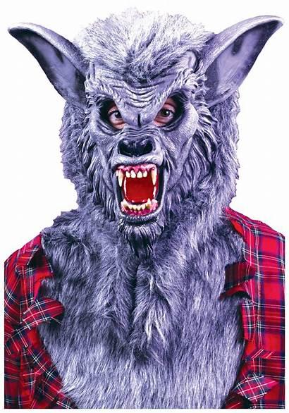 Werewolf Mask Halloween Costume Scary Grey Wolf