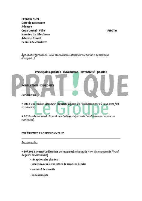 Modèle De Cv Professionnel 2016 by Modele Cv Brevet Professionnel Sle Resume