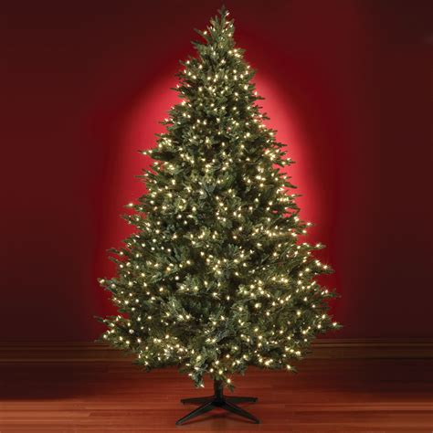 Picture Of Christmas Tree Wallpapers9