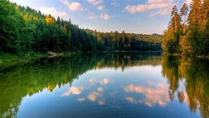 Nature Backgrounds Mac Scenario Landscapes Wood