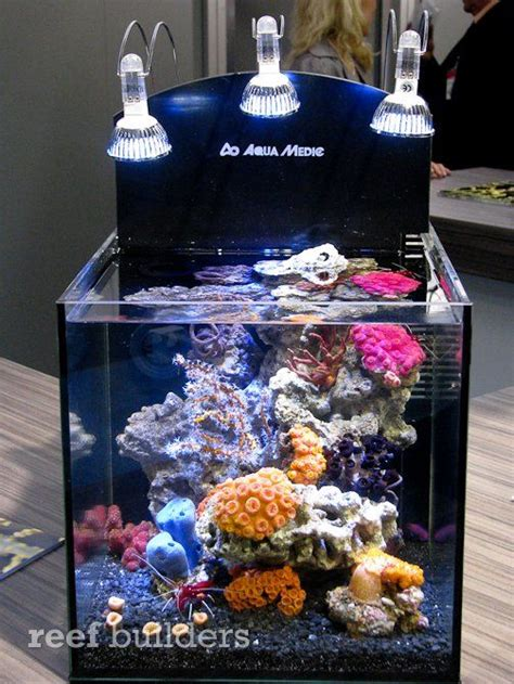 the striking nano reef aquarium pictured above is a demonstration tank that aquamedic had built