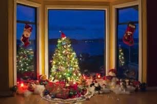 Christmas Tree Window Scene