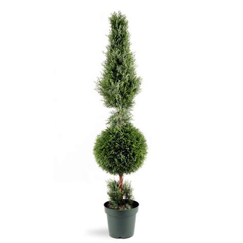 National Tree Company 5 Ft Juniper Cone And Ball Topiary