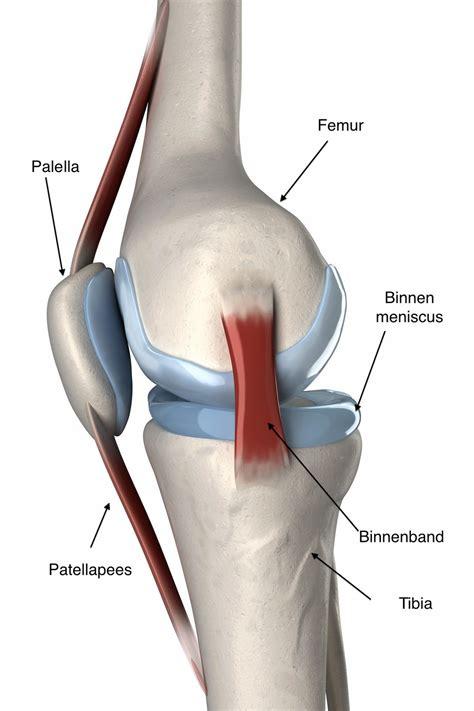 Achillespeespijn en inlegzolen als oplossing