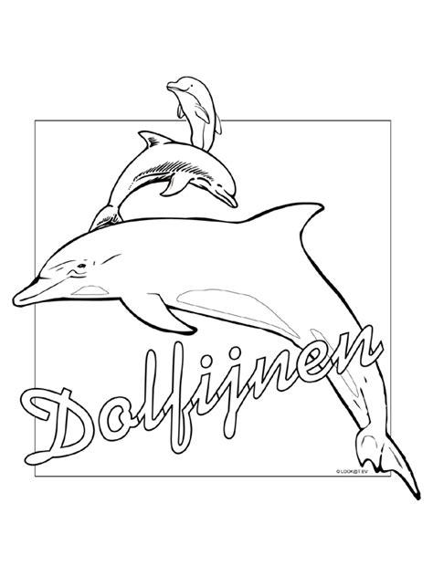 Dolfijn Kleurplaat Printen by Kleurplaat Dolfijnen Kleurplaten Nl