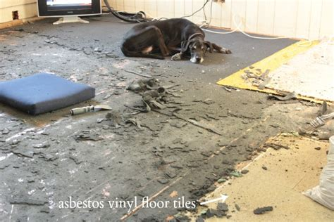 Remove Asbestos Floor Tiles Without Mask by Preparing For Hardwood Floor Restoration Open Letter To