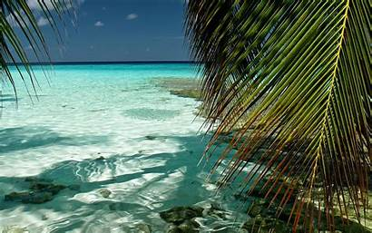 Ocean Indian Desktop