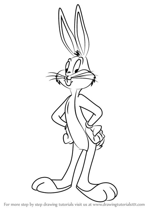 learn   draw bugs bunny  animaniacs animaniacs