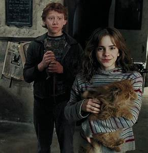 Hermione Granger and Harry Potter and the Prisoner of ...