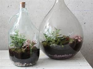 Bonsai Im Glas : eine gr ne deko idee f r faule g rtner ~ Eleganceandgraceweddings.com Haus und Dekorationen