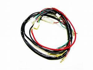 Electric Start  Kick Start Wiring Harness Kit  50cc 70cc 90cc 110cc 125cc