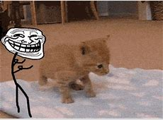 33 memes gif Imágenes Taringa!