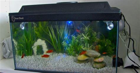 cheap fish tank decorations jpg 500 215 294 fish tanks fish tanks aquarium ideas