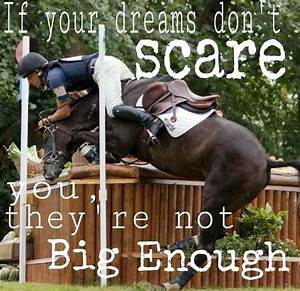 Best 10+ Horse ... Horse And Country Quotes