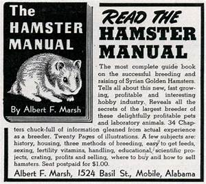 Read The Hamster Manual
