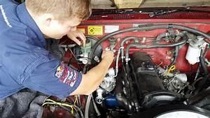 Bestseller  Toyota D4d Engine Wiring