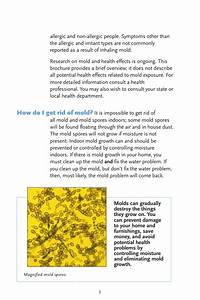 Epa Guide For Mold