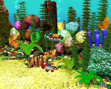 tropical fish aquarium memes
