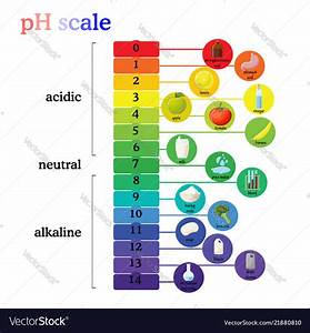 Ph Scale Diagram With Corresponding Acidic Or Vector Image