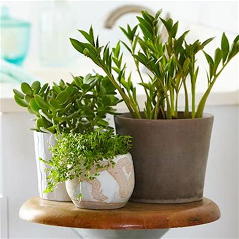 to freshen up your bathroom this summer use some of these