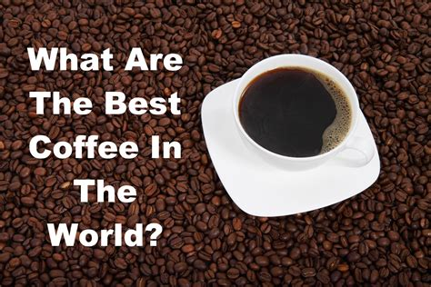best coffees in the world best coffee in the world which one is the best choice for