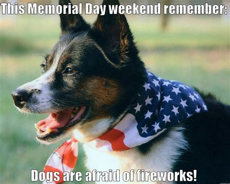 Memorial Day Weekend Meme - memorial day dogs quickmeme