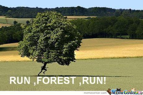 Run Forrest Run Meme - run forest run by readingisfun meme center