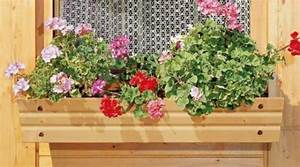 Blumenkasten Holz Balkon : blumenkasten pflanzkasten holz natur unbehandelt 100 cm 231000 ebay ~ Orissabook.com Haus und Dekorationen