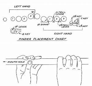 Flute Chart The Musician