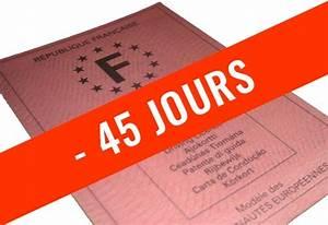 Permis De Conduire En 15 Jours : retrait de permis 45 jours penser location vsp garage vivant lyon entreprises ~ Maxctalentgroup.com Avis de Voitures