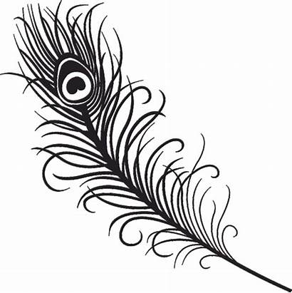 Clipart Tribal Feathers Feather Eagle Outline Drawings