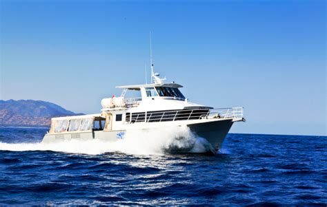 Cheap Reliable Boats by Gili Cat Fast Boat Gili Island Fastboats