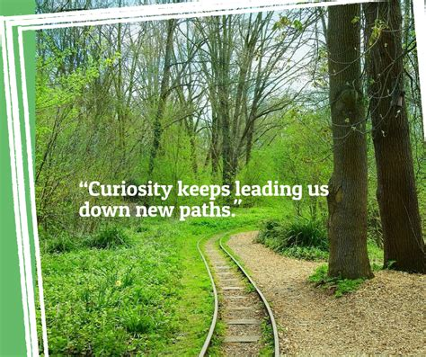 discover  paths   paths curiosity discover
