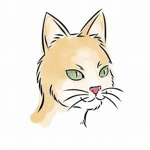 How, To, Draw, A, Cat, Face, In, 7, Steps