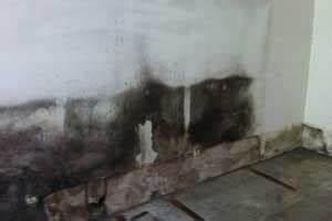 Schimmel Im Keller Was Tun : schimmel im keller entfernen ursache folgen und beseitigung ~ Frokenaadalensverden.com Haus und Dekorationen