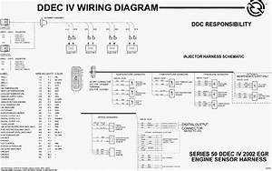 Wiring Diagram  34 Detroit Diesel Series 60 Ecm Wiring Diagram