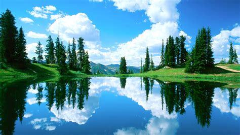 beautiful lake amazing landscape organic plants