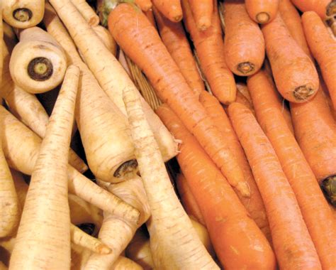carrot parsnip zucchini bread recipe edible phoenix