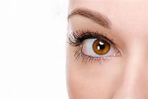 Eye, Makeup, Colors, Amber, Eyes, Light, Warm, Skin, Dark, Hair