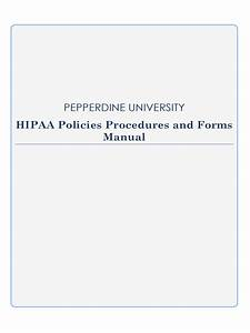Chart Security Hipaa Hippa Policy Template 2 Free Templates In Pdf Word