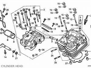 trx 300 rear differential diagram trx free engine image With 2000 honda 300ex parts diagram 1994 honda fourtrax 300 parts 1996 ford