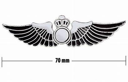 Wings Clipart Wing Pilot Aviation Aircraft Flight