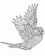 Coloring Parrot Adults Pages Flying Parrots Birds Printable Colouring Bird Print Getdrawings Getcolorings Pag sketch template