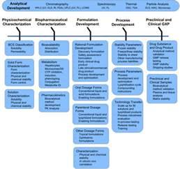 Drug Development Process