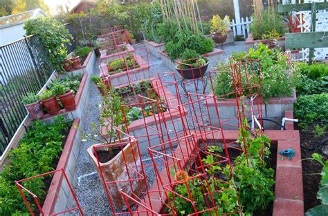 the kitchen garden entertaining from an ethnic indian kitchen garden tour 2
