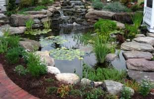 pond design mountain lake koi pond design with plants home design exles