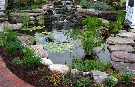 beatiful living rooms pond diy fish pond diy backyard pond ideas above ground