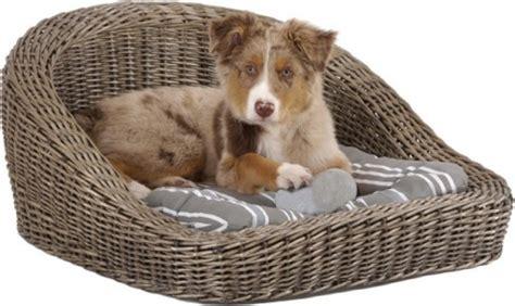 quel tissu pour canapé quel panier ou corbeille choisir pour mon chien
