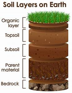 Diagram Showing Soil Layers On Earth Vector